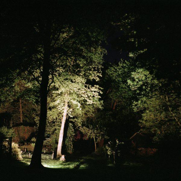 Kolderveen - Daniele Sambo