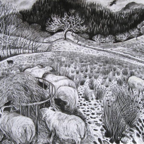 Davie's Field - Sarah Longley