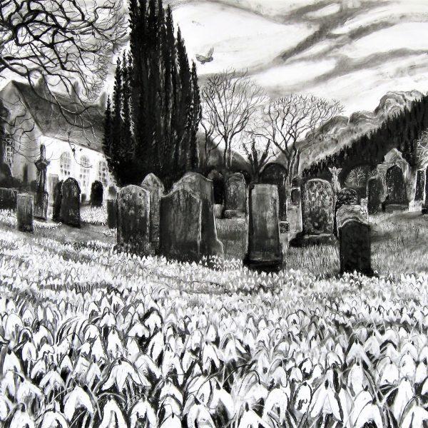 Snowdrops in Kirkton Graveyard - Sarah Longley