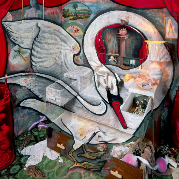 Mute Swan - Calum Colvin OBE RSA